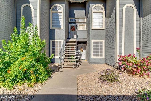 255 S Kyrene Road #105, Chandler, AZ 85226 (MLS #6219965) :: Keller Williams Realty Phoenix