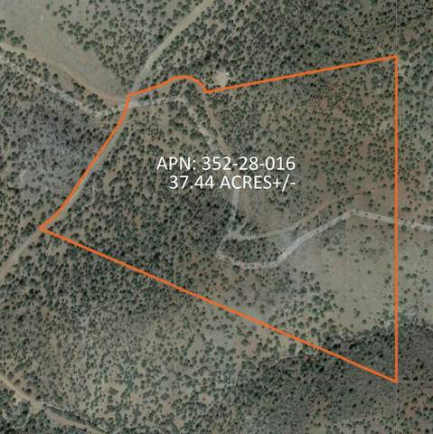 3382 N Lookout Canyon Road, Kingman, AZ 86401 (MLS #6220034) :: Kepple Real Estate Group
