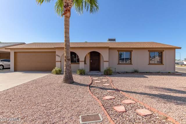 3901 E Hillery Drive, Phoenix, AZ 85032 (MLS #6220037) :: Yost Realty Group at RE/MAX Casa Grande