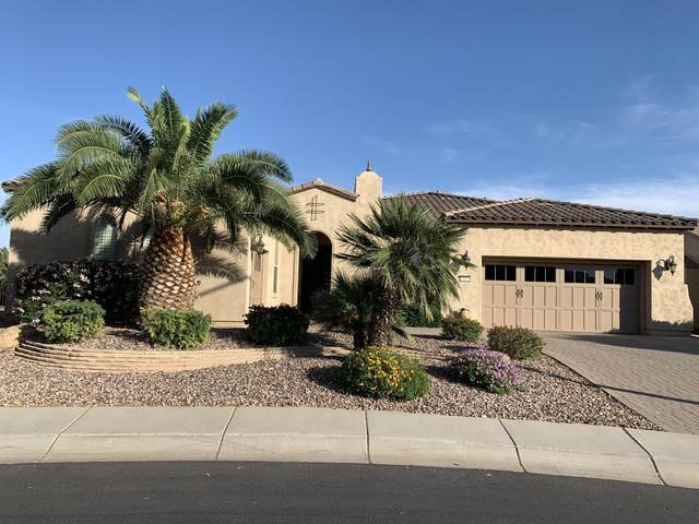 13031 W Evergreen Terrace, Peoria, AZ 85383 (MLS #6220065) :: Hurtado Homes Group