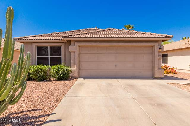 3140 N 130TH Lane, Avondale, AZ 85392 (MLS #6220103) :: Hurtado Homes Group