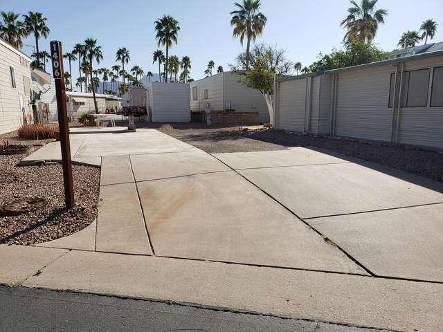 705 S Havasupai Drive, Apache Junction, AZ 85119 (MLS #6220110) :: The Laughton Team