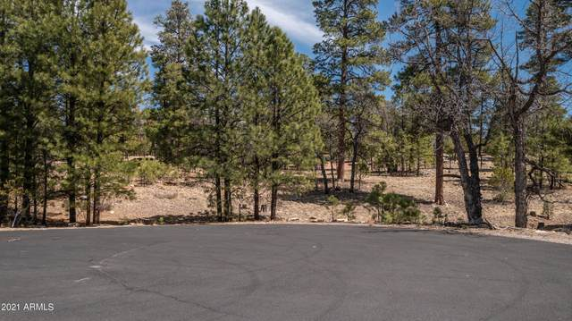 1605 Mule Deer Place, Happy Jack, AZ 86024 (MLS #6220121) :: My Home Group