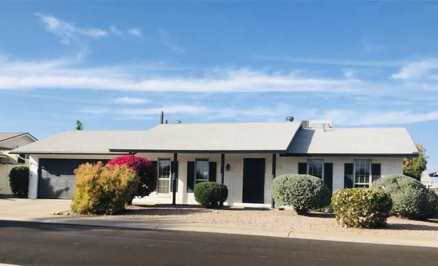 10426 W Mountain View Road, Sun City, AZ 85351 (MLS #6220122) :: Yost Realty Group at RE/MAX Casa Grande
