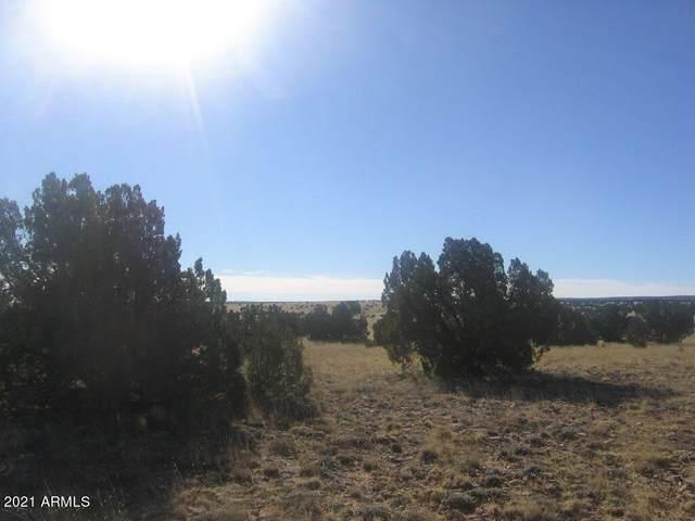 Lot 551 Chevelon Canyon Ranch, Overgaard, AZ 85933 (MLS #6220143) :: Howe Realty