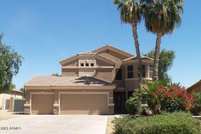 13533 W Holly Street, Goodyear, AZ 85395 (MLS #6220145) :: The Luna Team