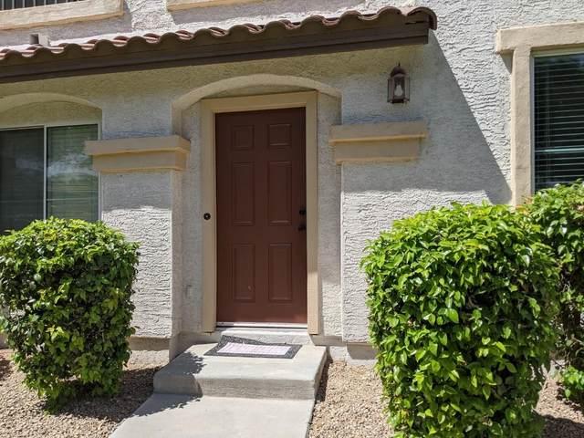905 W Wendy Way, Gilbert, AZ 85233 (MLS #6220181) :: Arizona 1 Real Estate Team