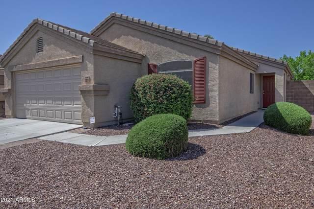 12010 W Camino Vivaz, Sun City, AZ 85373 (MLS #6220234) :: Executive Realty Advisors