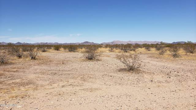 42xxx W Camelback Road, Tonopah, AZ 85354 (MLS #6220237) :: RE/MAX Desert Showcase