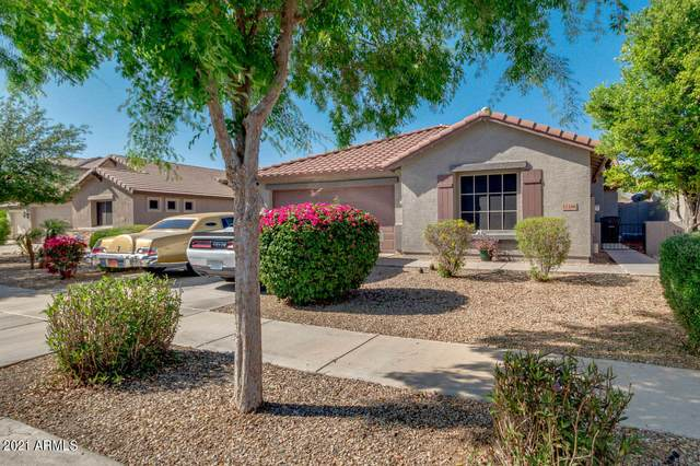 11166 W Hadley Street, Avondale, AZ 85323 (MLS #6220241) :: RE/MAX Desert Showcase