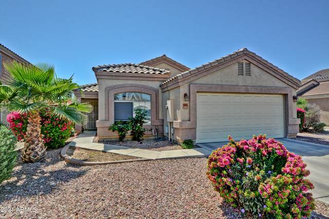 12821 W Via Camille Drive, El Mirage, AZ 85335 (MLS #6220271) :: Yost Realty Group at RE/MAX Casa Grande