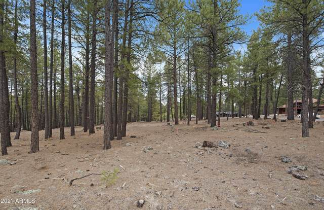 2061 Peery Francis, Flagstaff, AZ 86005 (MLS #6220274) :: Service First Realty