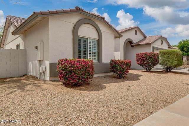 7813 W Pueblo Avenue, Phoenix, AZ 85043 (MLS #6220284) :: Midland Real Estate Alliance