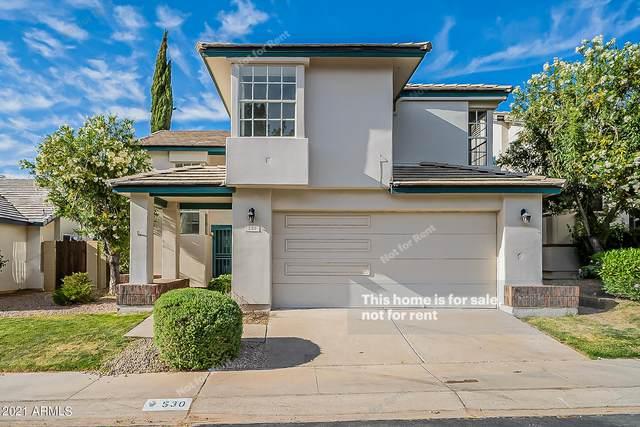 530 W Tierra Buena Lane, Phoenix, AZ 85023 (MLS #6220311) :: Dave Fernandez Team | HomeSmart