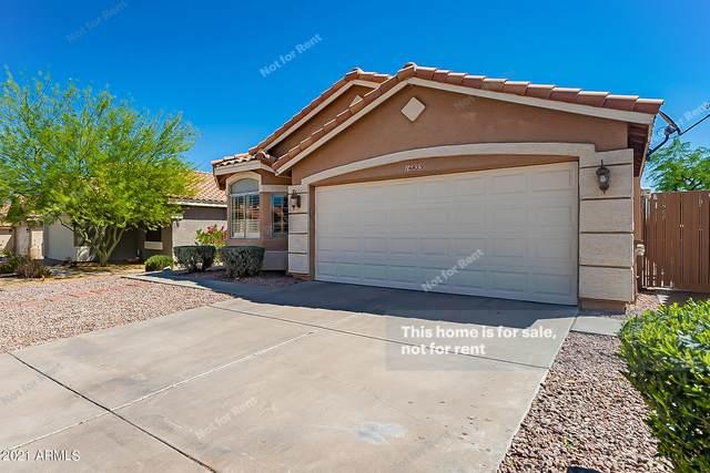 16823 S 8TH Street, Phoenix, AZ 85048 (MLS #6220312) :: Dave Fernandez Team | HomeSmart