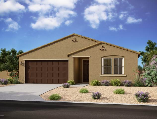 13411 W Lariat Lane, Peoria, AZ 85383 (MLS #6220358) :: Keller Williams Realty Phoenix