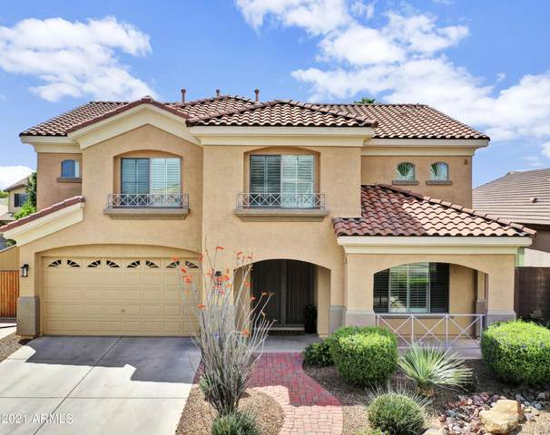 14593 W Banff Lane, Surprise, AZ 85379 (MLS #6220436) :: The Property Partners at eXp Realty