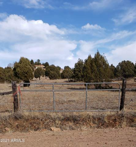 2S-A N State Route 288, Young, AZ 85554 (MLS #6220446) :: The Dobbins Team