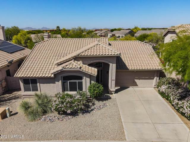 19002 N 90TH Place, Scottsdale, AZ 85255 (MLS #6220451) :: Yost Realty Group at RE/MAX Casa Grande