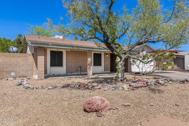 3770 W Wood Drive, Phoenix, AZ 85029 (MLS #6220470) :: Yost Realty Group at RE/MAX Casa Grande
