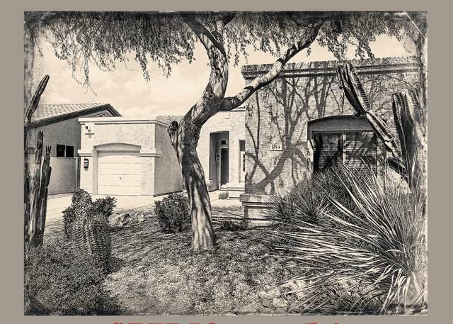 854 E Harrison Court, Gilbert, AZ 85295 (MLS #6220479) :: Arizona 1 Real Estate Team