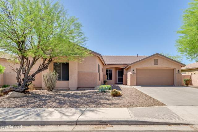 2221 E Indian Wells Drive, Chandler, AZ 85249 (MLS #6220489) :: Yost Realty Group at RE/MAX Casa Grande