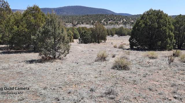 2S-B N State Route 288, Young, AZ 85554 (MLS #6220492) :: Service First Realty