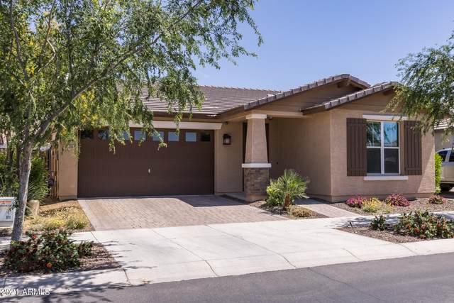 4709 S Aileron Lane, Mesa, AZ 85212 (MLS #6220532) :: Balboa Realty