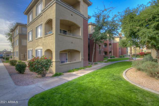5401 E Van Buren Street E #1065, Phoenix, AZ 85008 (MLS #6220541) :: Yost Realty Group at RE/MAX Casa Grande
