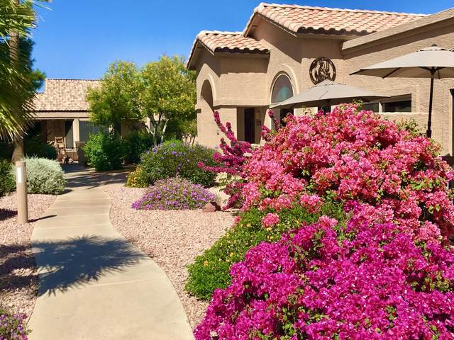 14300 W Bell Road #416, Surprise, AZ 85374 (MLS #6220550) :: The Newman Team
