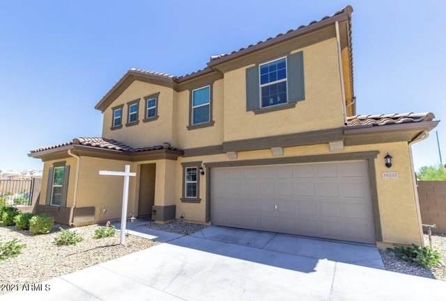 16332 W Moreland Street, Goodyear, AZ 85338 (MLS #6220629) :: Long Realty West Valley