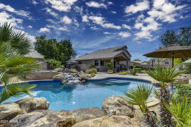 4450 E Morning Vista Lane, Cave Creek, AZ 85331 (MLS #6220631) :: Yost Realty Group at RE/MAX Casa Grande