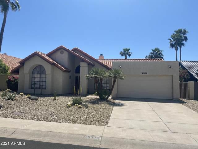 11079 E Mary Katherine Drive, Scottsdale, AZ 85259 (MLS #6220657) :: Howe Realty