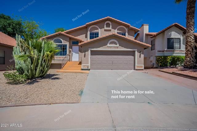 5510 W Del Rio Court, Chandler, AZ 85226 (MLS #6220659) :: Keller Williams Realty Phoenix