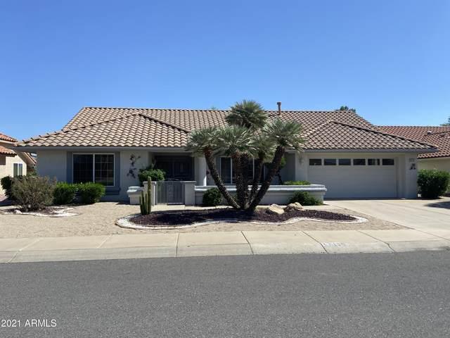 14115 W Pavillion Drive, Sun City West, AZ 85375 (MLS #6220685) :: Keller Williams Realty Phoenix