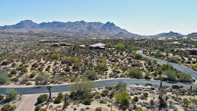26125 N 116TH Street, Scottsdale, AZ 85255 (MLS #6220714) :: Hurtado Homes Group