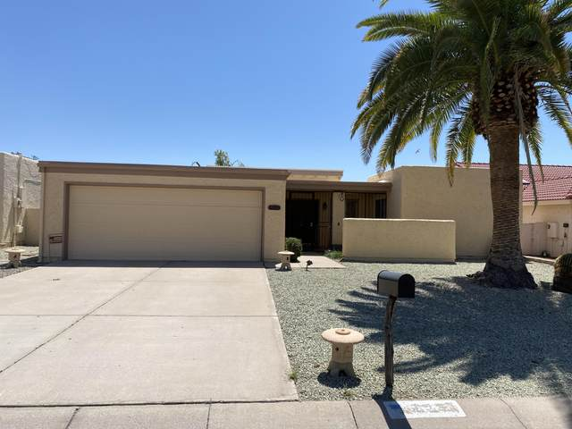 9539 E Pinto Place, Sun Lakes, AZ 85248 (MLS #6220724) :: Devor Real Estate Associates