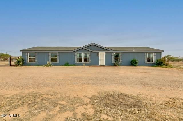 4481 E Pony Track Lane, San Tan Valley, AZ 85140 (MLS #6220726) :: Yost Realty Group at RE/MAX Casa Grande