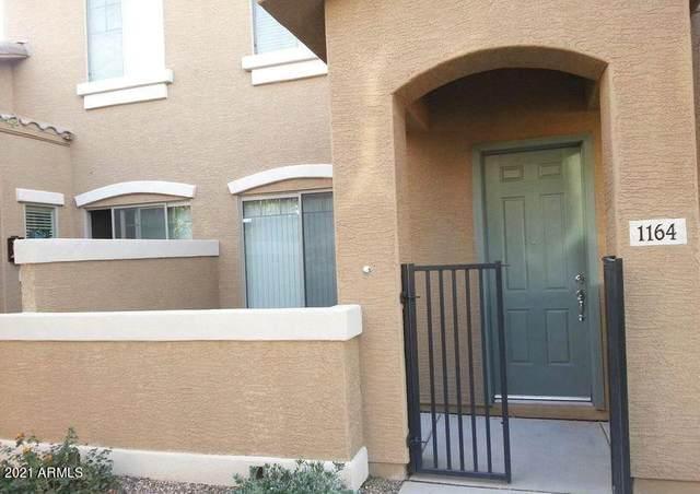 15240 N 142ND Avenue #1164, Surprise, AZ 85379 (MLS #6220759) :: Long Realty West Valley