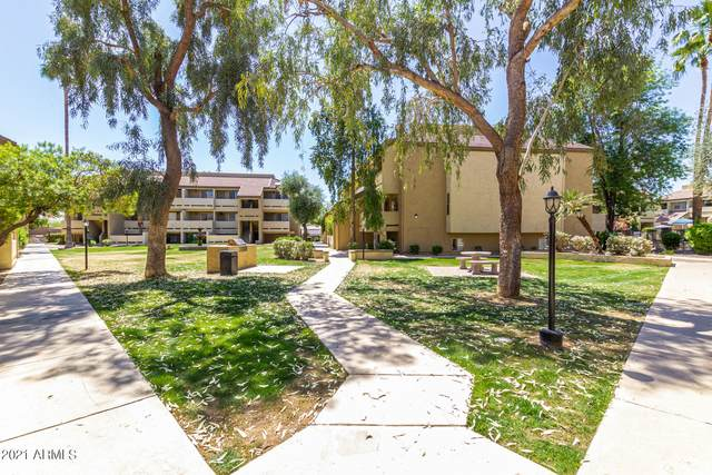 1331 W Baseline Road #348, Mesa, AZ 85202 (MLS #6220822) :: The Newman Team