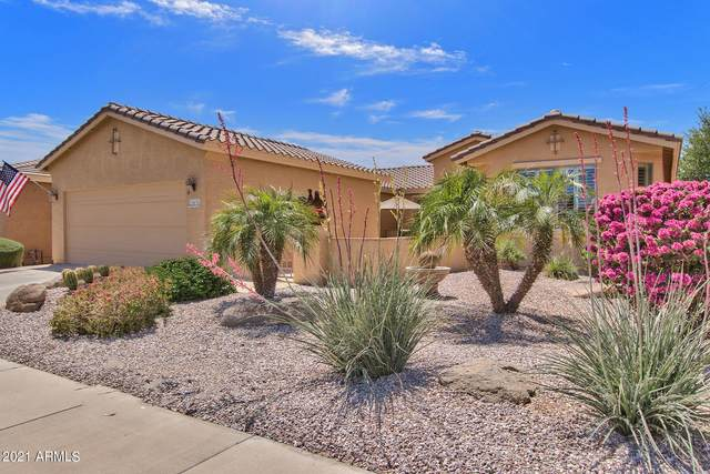 20870 N Sweet Dreams Drive, Maricopa, AZ 85138 (MLS #6220826) :: Yost Realty Group at RE/MAX Casa Grande