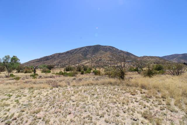 TBD E Mountain View Drive, Hereford, AZ 85615 (MLS #6220892) :: Service First Realty