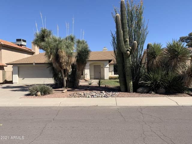 3432 E Tonto Lane, Phoenix, AZ 85050 (MLS #6220903) :: The Newman Team