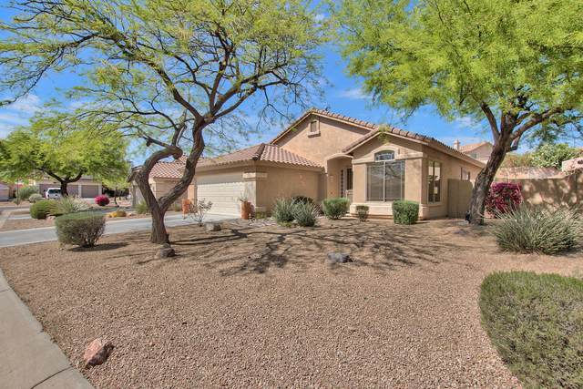 10428 E Salt Bush Drive, Scottsdale, AZ 85255 (MLS #6220938) :: Jonny West Real Estate