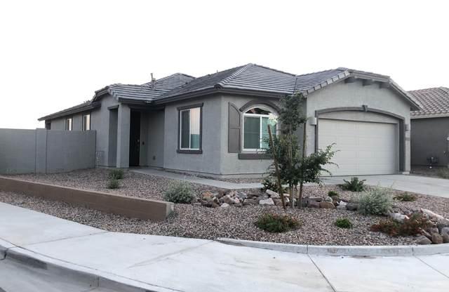 20245 W Morning Glory Street, Buckeye, AZ 85326 (MLS #6220963) :: Yost Realty Group at RE/MAX Casa Grande