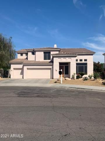 3649 N 145TH Avenue, Goodyear, AZ 85395 (MLS #6220972) :: Hurtado Homes Group