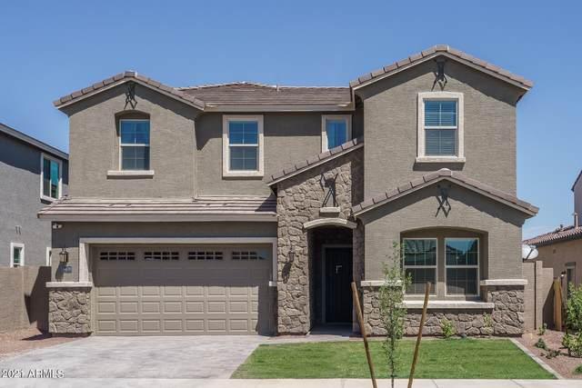 18406 W Clinton Street, Surprise, AZ 85388 (MLS #6221021) :: Dijkstra & Co.