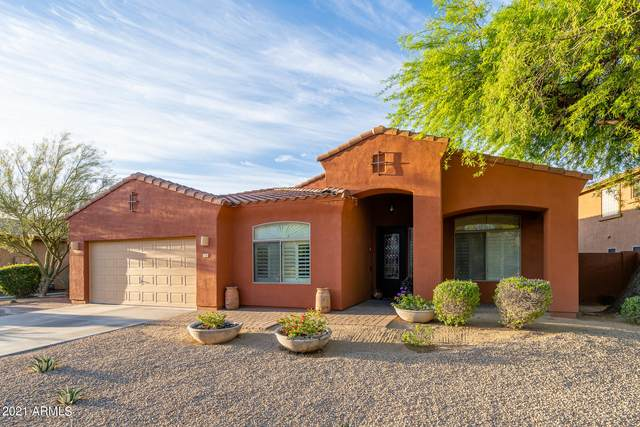 27381 N Whitehorn Trail, Peoria, AZ 85383 (MLS #6221041) :: The Riddle Group