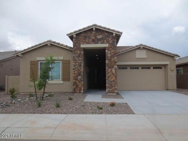25172 N 106TH Drive, Peoria, AZ 85383 (MLS #6221064) :: Yost Realty Group at RE/MAX Casa Grande