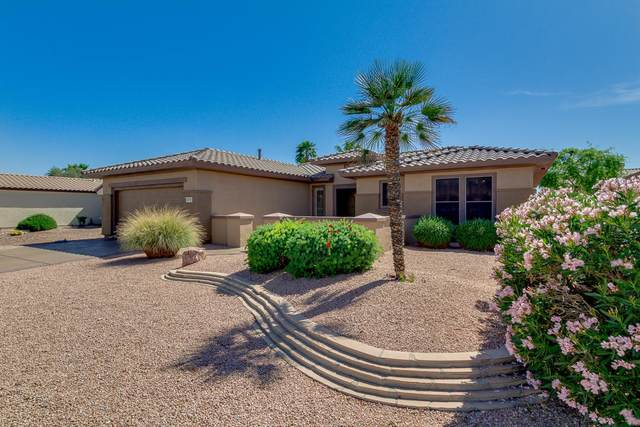 15141 W Camino Estrella Drive, Surprise, AZ 85374 (MLS #6221139) :: West Desert Group | HomeSmart